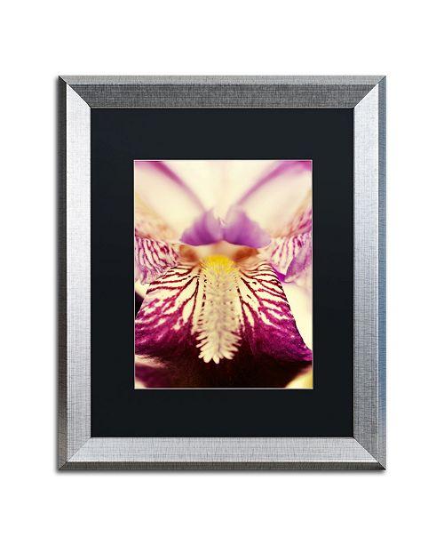 "Trademark Global PIPA Fine Art 'Antiqued Iris' Matted Framed Art - 16"" x 20"""