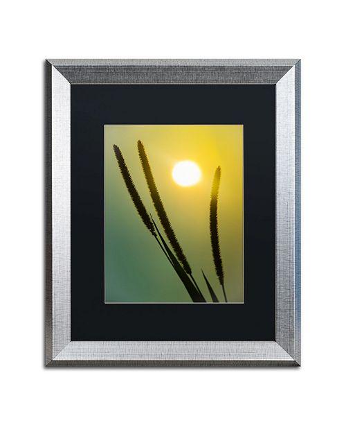"Trademark Global PIPA Fine Art 'Silhouettes in Sunset' Matted Framed Art - 16"" x 20"""