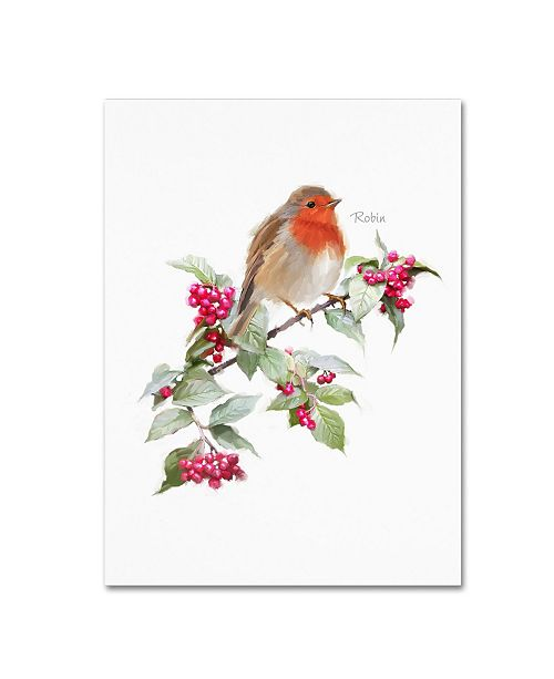 "Trademark Global The Macneil Studio 'Robin' Canvas Art - 18"" x 24"""
