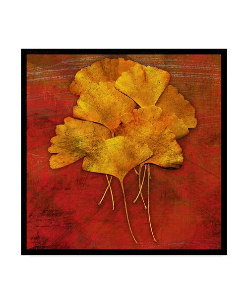 "Trademark Global John W. Golden 'Gingko Red' Canvas Art - 18"" x 18"""