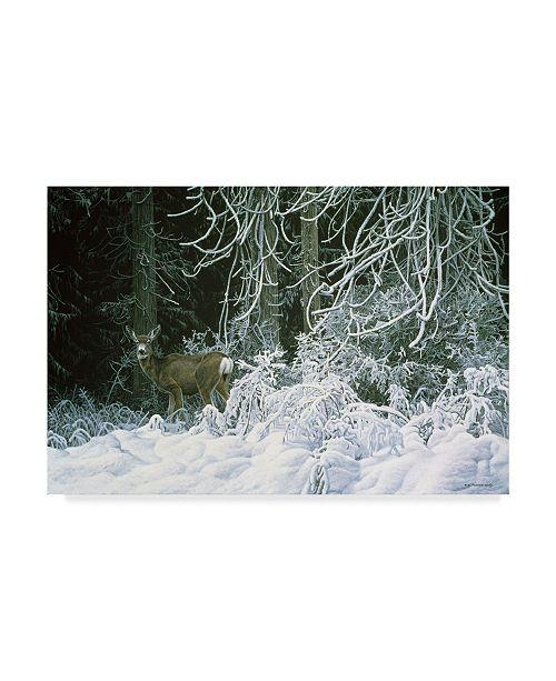 "Trademark Global Ron Parker 'Snow Palace Mule Deer' Canvas Art - 16"" x 24"""