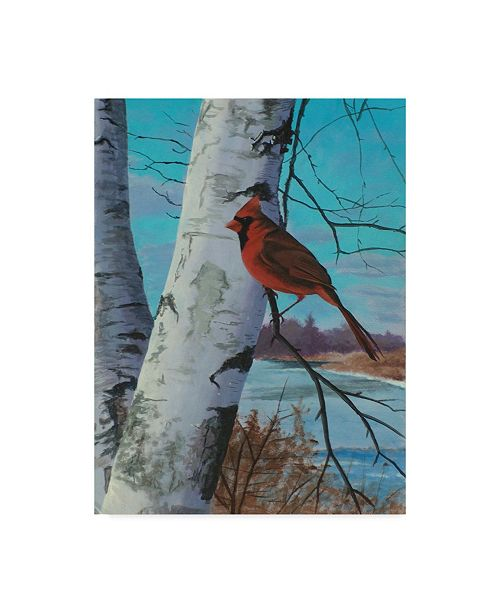 """Trademark Global Rusty Frentner 'Painting For Red Bird' Canvas Art - 18"""" x 24"""""""