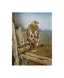 "Rusty Frentner 'Red Tailed Hawk' Canvas Art - 18"" x 24"""