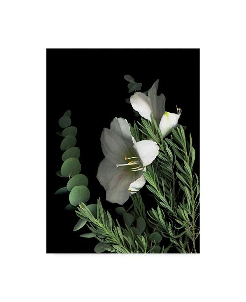 "Trademark Global Susan S. Barmon 'Amaryllis With Lavender And Eucalyptus' Canvas Art - 18"" x 24"""