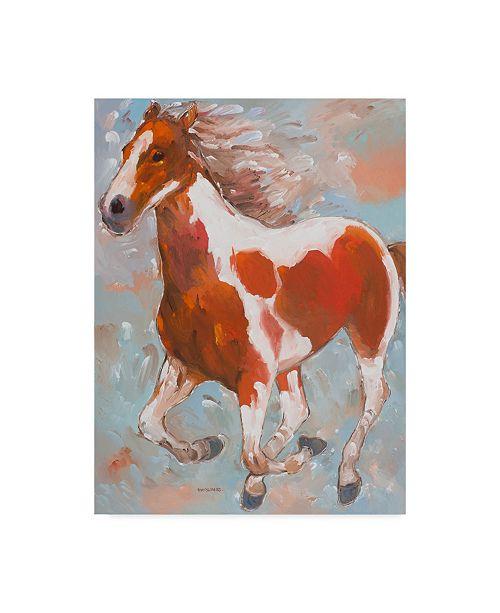 "Trademark Global Hooshang Khorasani 'Painted Horse 1' Canvas Art - 18"" x 24"""