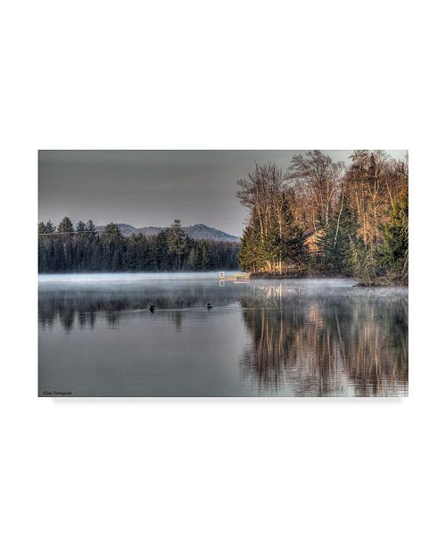 "Trademark Global Ian Tornquist 'Early Morning Swim Forest' Canvas Art - 19"" x 12"""