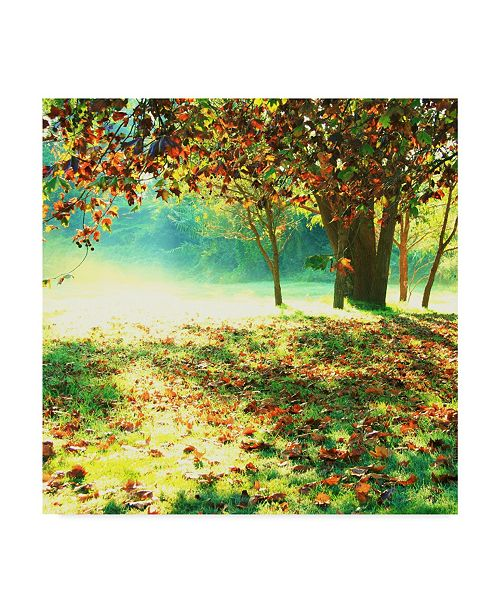 "Trademark Global Incredi 'Colorful Morning' Canvas Art - 14"" x 14"""
