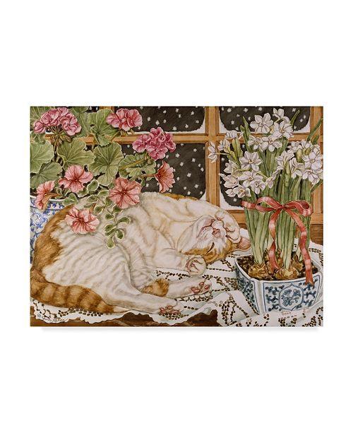 "Trademark Global Jan Benz 'Long Winters Nap' Canvas Art - 19"" x 14"""