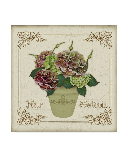 "Trademark Global Jean Plout 'Fleur Hortensia 8' Canvas Art - 14"" x 14"""