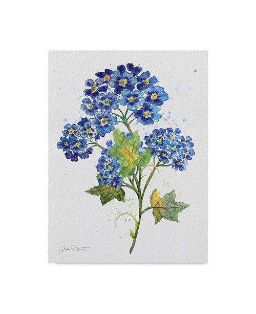 "Trademark Global Jean Plout 'Watercolor Flowers 3' Canvas Art - 14"" x 19"""