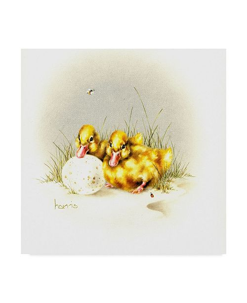 "Trademark Global Peggy Harris 'Ducks And Egg' Canvas Art - 14"" x 14"""