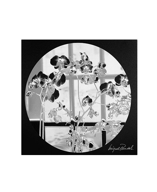 """Trademark Global Miguel Paredes 'Black Orchids' Canvas Art - 18"""" x 18"""""""
