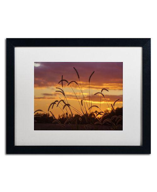 """Trademark Global Jason Shaffer 'Weeds' Matted Framed Art - 20"""" x 16"""""""