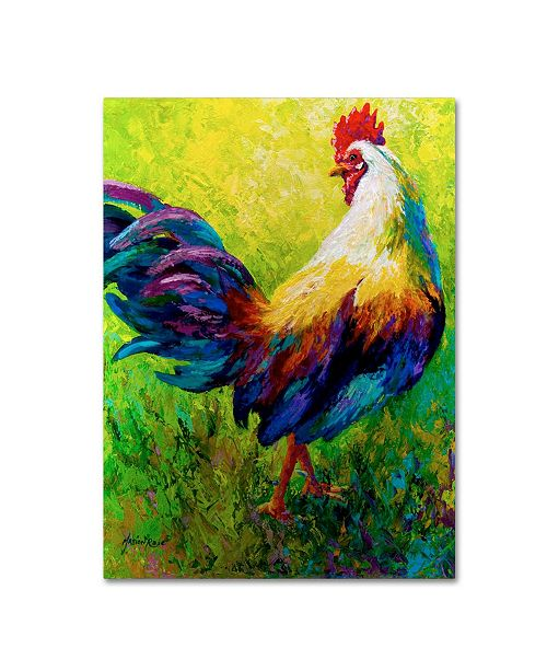 """Trademark Global Marion Rose 'CEO Rooster' Canvas Art - 35"""" x 47"""""""