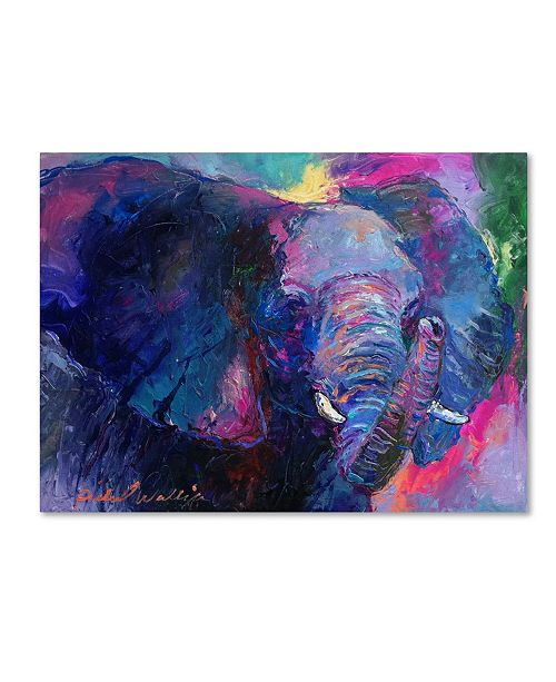 "Trademark Global Richard Wallich 'Art Elephoto 4' Canvas Art - 35"" x 47"""