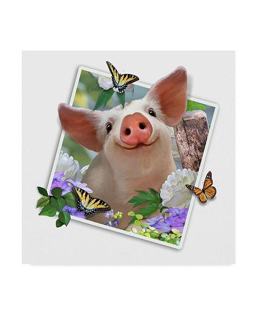 "Trademark Global Howard Robinson 'Baby Pig Photograph' Canvas Art - 24"" x 24"""