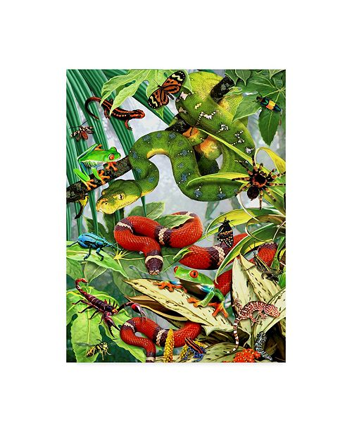 "Trademark Global Howard Robinson 'Tropical Snakes' Canvas Art - 24"" x 32"""
