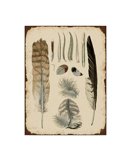"""Trademark Global Jean Plout 'Vintage Feather Study White' Canvas Art - 35"""" x 47"""""""