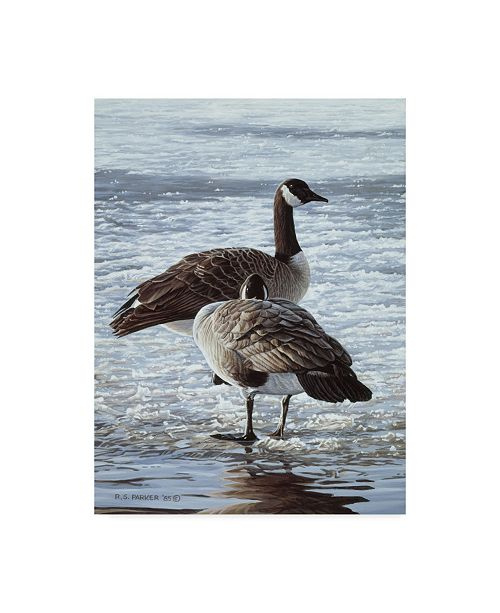 """Trademark Global Ron Parker 'Freeze Up Canada Geese' Canvas Art - 35"""" x 47"""""""