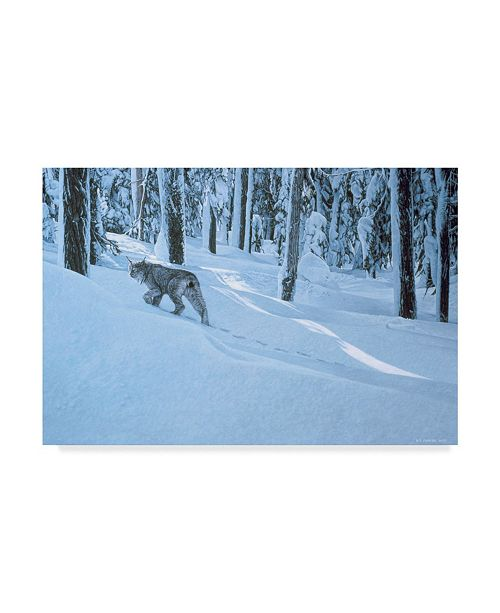 "Trademark Global Ron Parker 'Northern Winter' Canvas Art - 30"" x 47"""