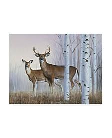 """Rusty Frentner 'Deer In Birch Woods' Canvas Art - 35"""" x 47"""""""
