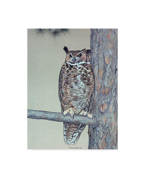 "Trademark Global Rusty Frentner 'Owl Two' Canvas Art - 24"" x 32"""