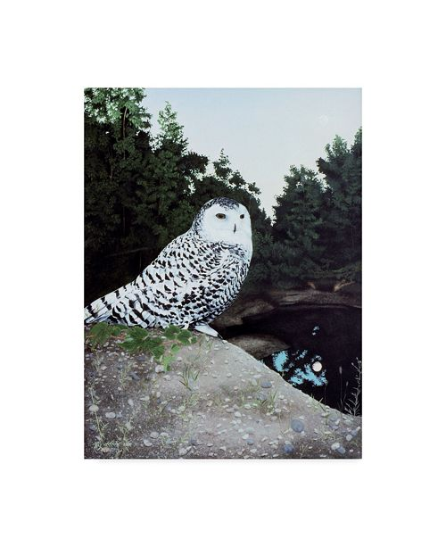 "Trademark Global Rusty Frentner 'Snowy' Canvas Art - 35"" x 47"""