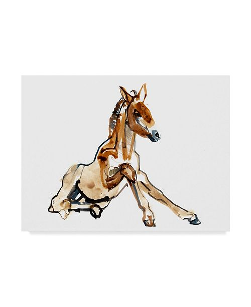 "Trademark Global Mark Adlington 'Ochre Foal Przewalski' Canvas Art - 35"" x 47"""