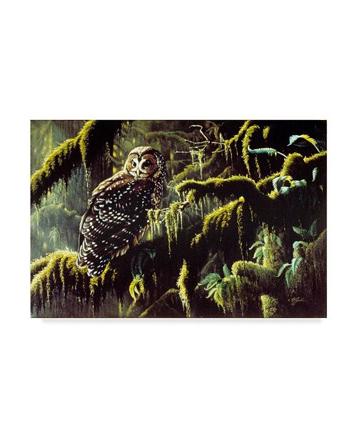 "Trademark Global Wilhelm Goebel 'Spirit Of Ancient Forests' Canvas Art - 30"" x 47"""