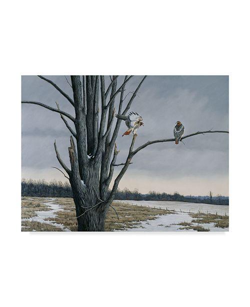 "Trademark Global Wilhelm Goebel 'Old Elm And Redtail' Canvas Art - 35"" x 47"""