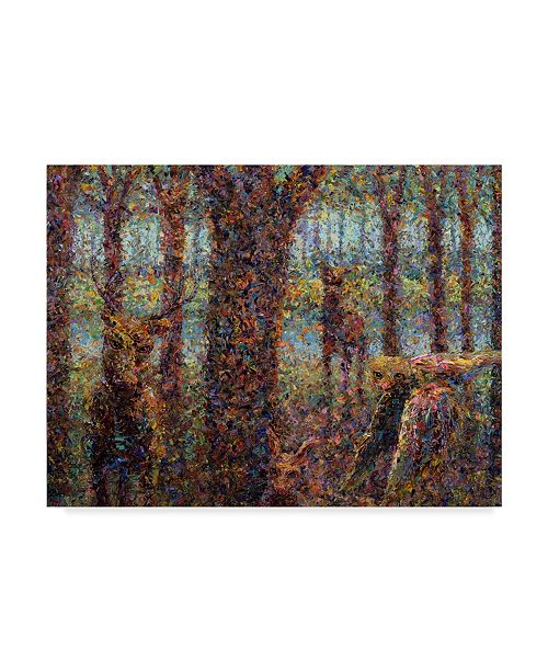 "Trademark Global James W. Johnson 'Encounter' Canvas Art - 47"" x 35"""