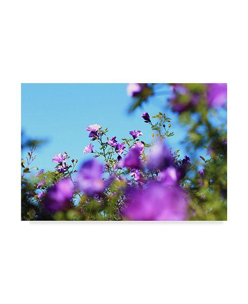 "Trademark Global Incredi 'Blurred Purple Flowers' Canvas Art - 32"" x 22"""