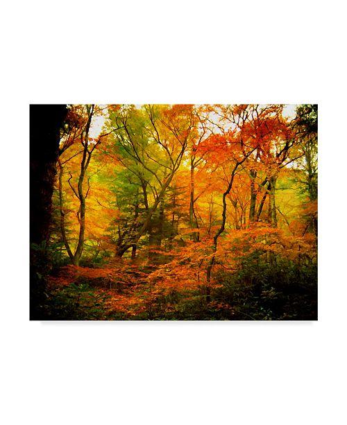 "Trademark Global J.D. Mcfarlan 'Chimneys Trail, Tn' Canvas Art - 47"" x 35"""