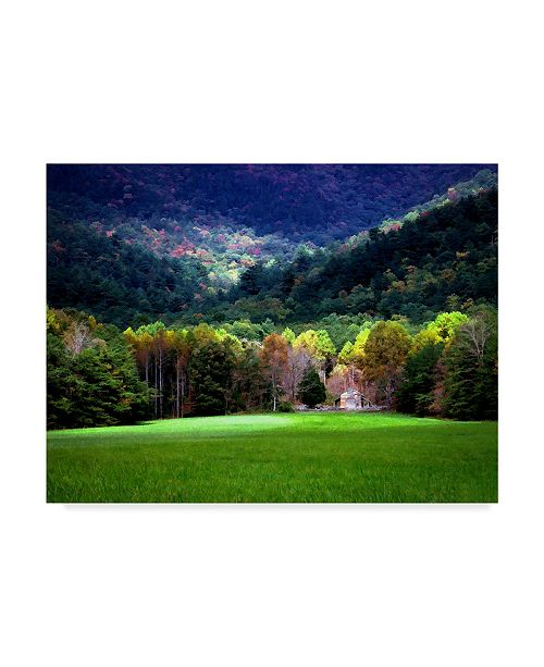 "Trademark Global J.D. Mcfarlan 'Oliver Cabin, Tn Lights' Canvas Art - 32"" x 24"""