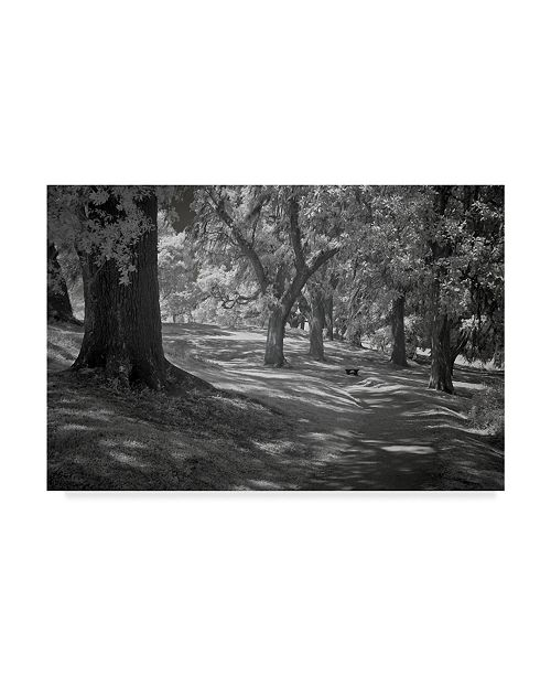 "Trademark Global J.D. Mcfarlan 'Ir Middleton Place, Sc 3' Canvas Art - 47"" x 30"""