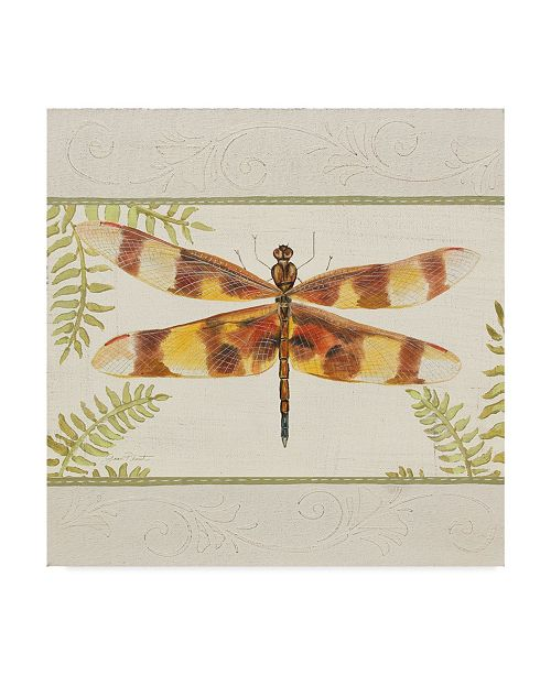 "Trademark Global Jean Plout 'Dragonfly Wonder 3' Canvas Art - 35"" x 35"""