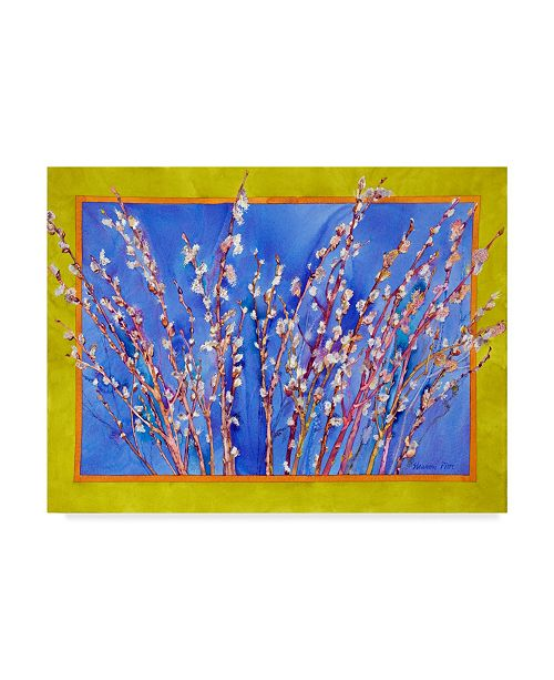 """Trademark Global Sharon Pitts 'Pussy Willows' Canvas Art - 47"""" x 35"""""""