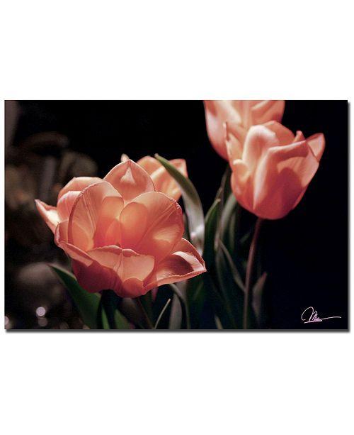 "Trademark Global Martha Guerra 'Pink Tulips' Canvas Art - 24"" x 16"""