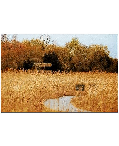 """Trademark Global The Marsh in April by Lois Bryan Canvas Art - 24"""" x 16"""""""