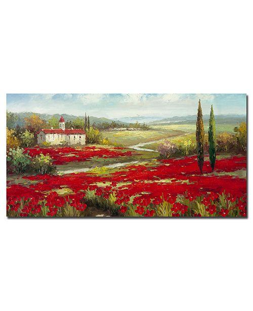 "Trademark Global Rio 'Field of Poppies' Canvas Art - 47"" x 24"""