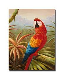 "Rio 'Amazon Rain Forest' Canvas Art - 32"" x 26"""