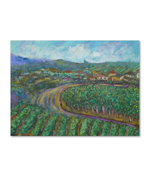 "Trademark Global Manor Shadian 'Cherry Trees and Strawberry Fields' Canvas Art - 47"" x 35"""