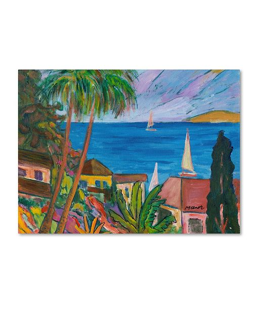 "Trademark Global Manor Shadian 'Three Sails on the Pacific' Canvas Art - 47"" x 35"""