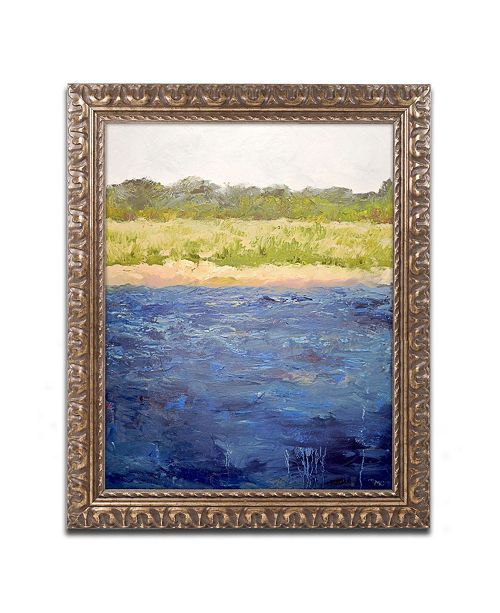"Trademark Global Michelle Calkins 'Coastal Dunes' Ornate Framed Art - 20"" x 16"""