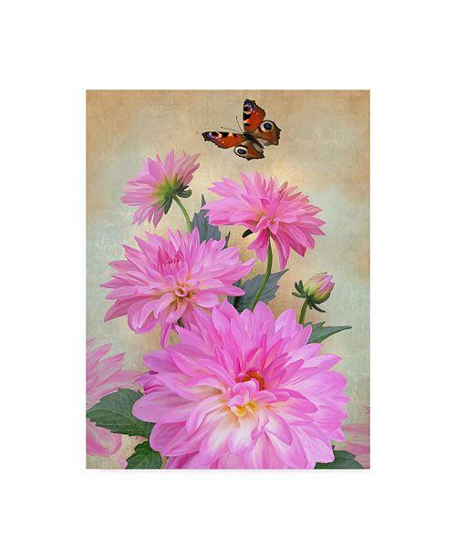 "Trademark Global Howard Robinson 'Butterflies And Flowers' Canvas Art - 14"" x 19"""