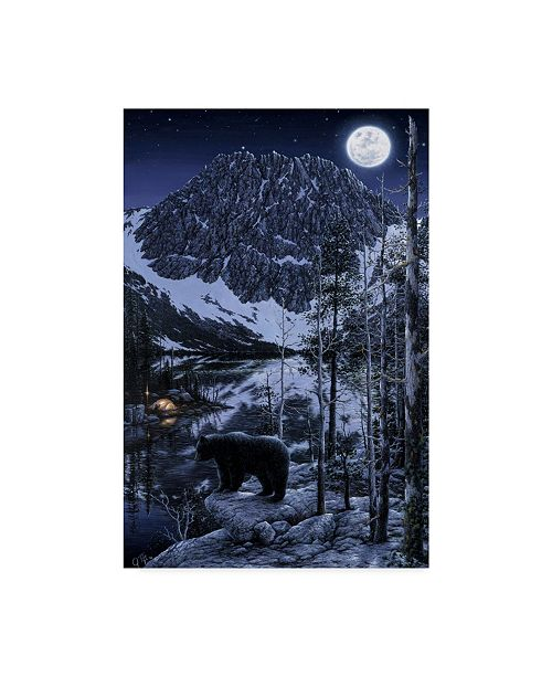 """Trademark Global Jeff Tift 'The Visitor Night' Canvas Art - 12"""" x 19"""""""