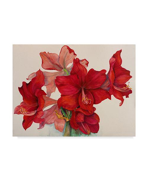 "Trademark Global Joanne Porter 'Holiday Amaryllis' Canvas Art - 14"" x 19"""