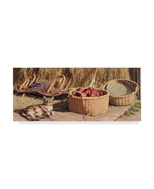 "Trademark Global William Breedon 'Cider Season' Canvas Art - 10"" x 24"""