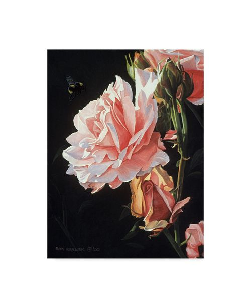 """Trademark Global Ron Parker 'Rose And Bumblebee' Canvas Art - 14"""" x 19"""""""