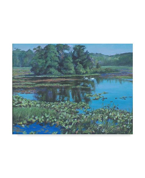 "Trademark Global Rusty Frentner 'Sunday Swans' Canvas Art - 14"" x 19"""